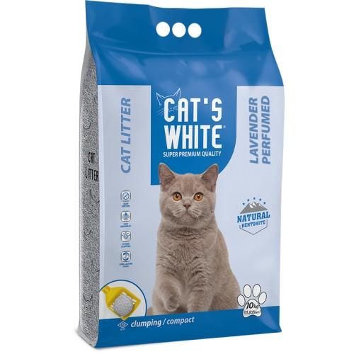 CAT`S WHITE